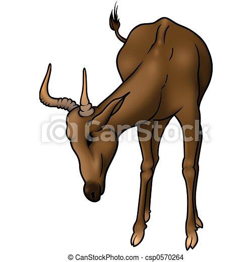 Antelope Line Drawing Grazing Antelope Drawing