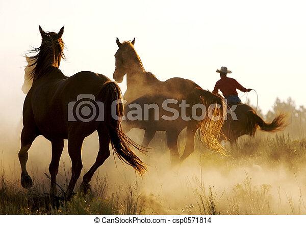 Running Wild - csp0571814