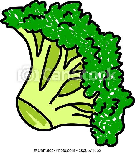 broccoli - csp0571852