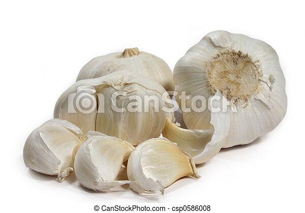 garlic bulbs - csp0586008