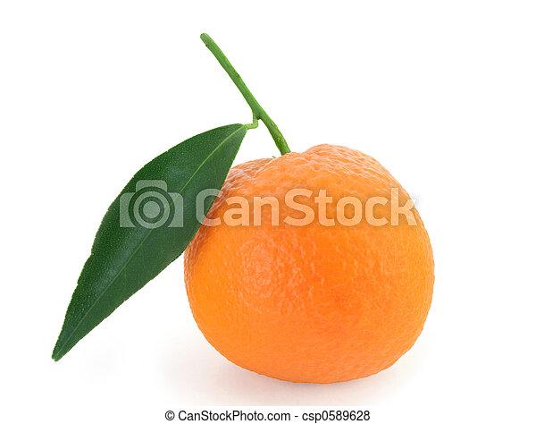 Mandarin orange - citrus reticulata - csp0589628