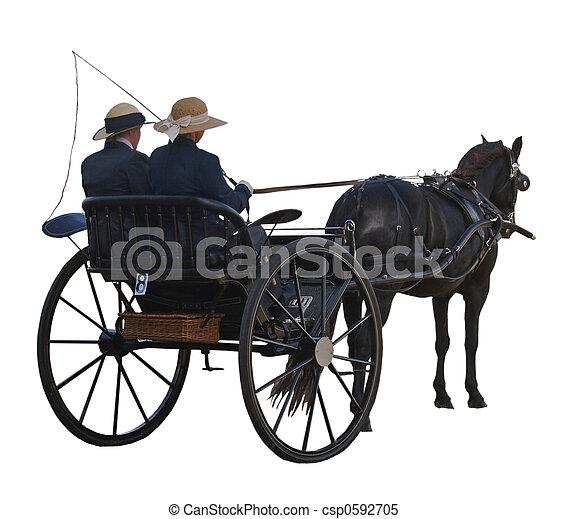 Horse & Carriage - csp0592705