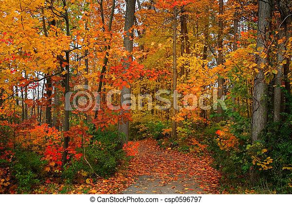 otoño, escénico - csp0596797