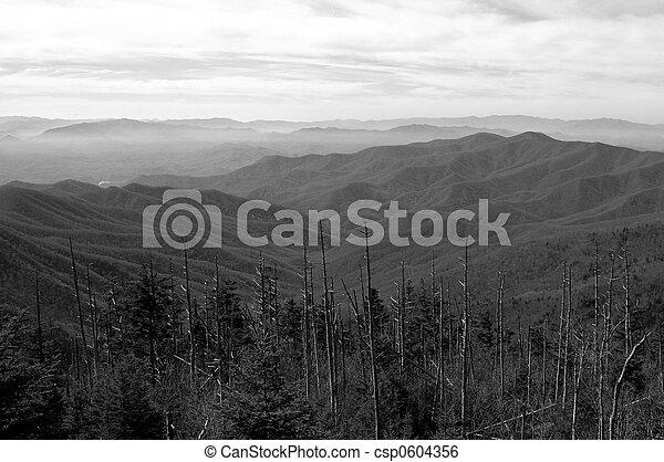 Clingman\'s Dome View - csp0604356