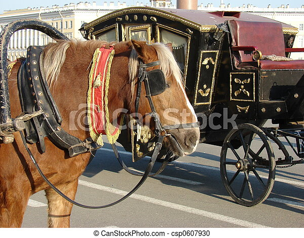 horse & carriage - csp0607930