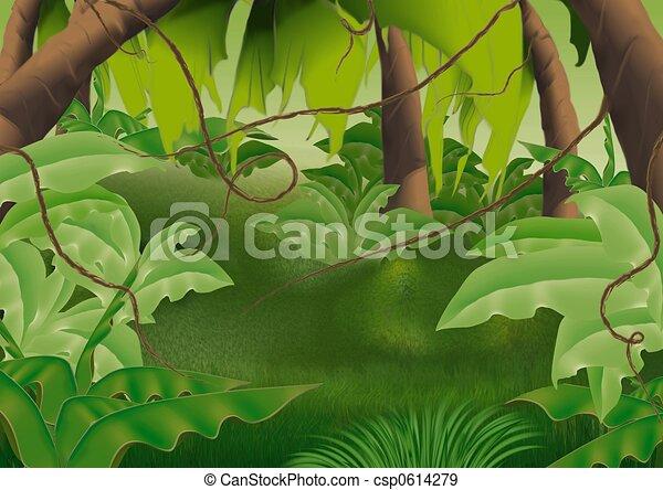 Virgin forest - csp0614279