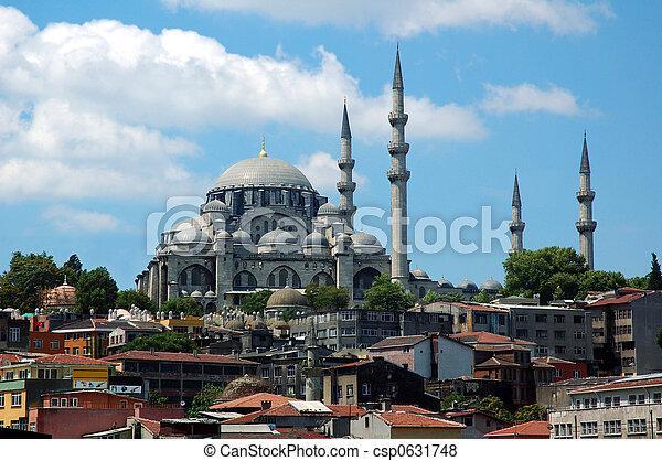 Minarets on the Suliman t - csp0631748