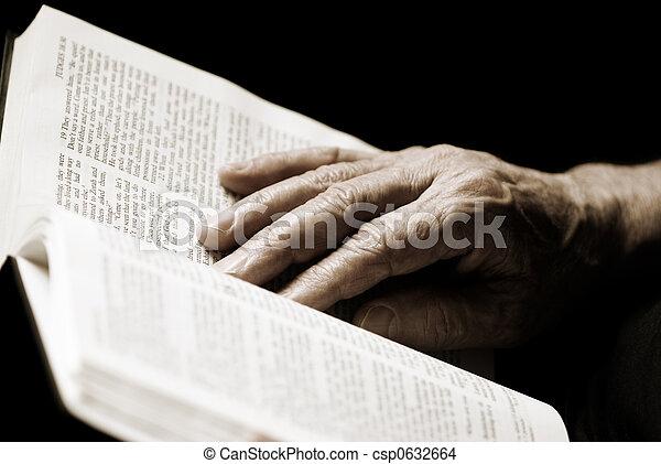 reading the Bible - csp0632664