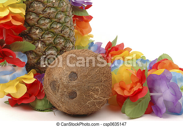 Pineapple and Coconut - csp0635147