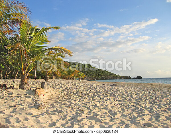 Tropical caraibe beach with palm trees and white sand, Roatan island, Honduras - csp0638124