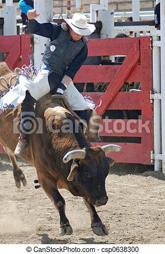 Bull Rider - csp0638300