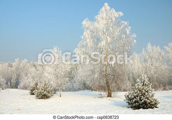 hiver - csp0638723