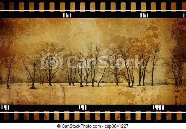 grunge trees - csp0641227