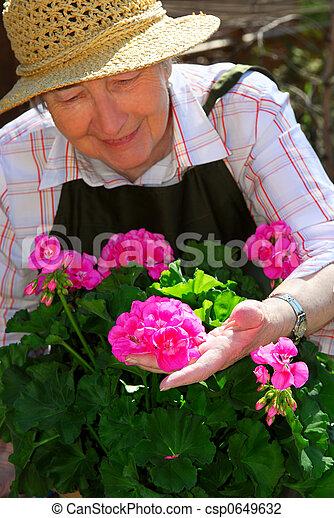 Senior woman gardening - csp0649632