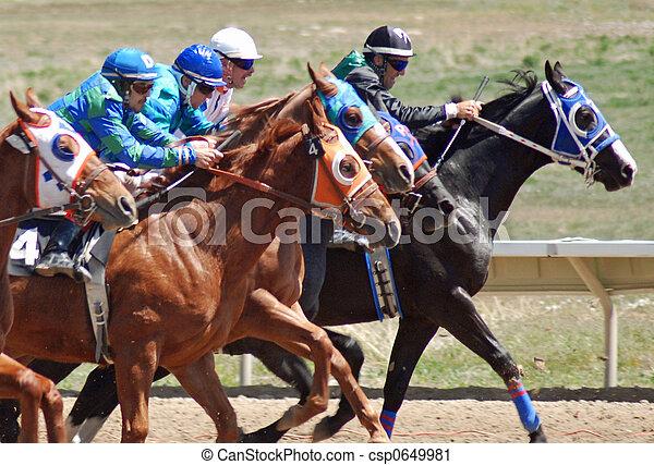 Quarter Horse racing i...