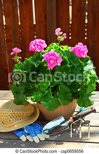 Gardening tools - csp0659556