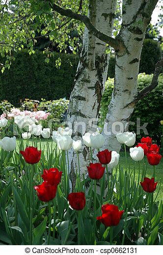 Garden harmony - csp0662131
