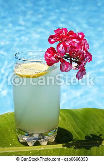 Summer Lemonade - csp0666033