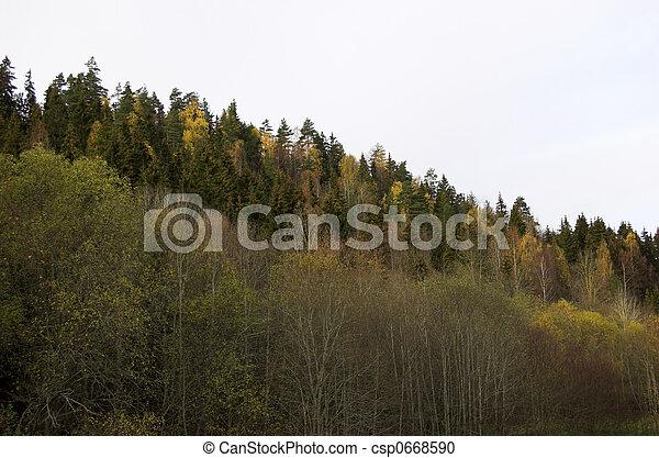 Treeline Slope - csp0668590