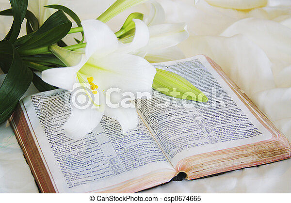 Easter Lily and Bible - csp0674665