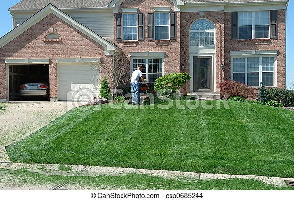 Photo de fauchage les pelouse professionnel pelouse for Pelouse tarif