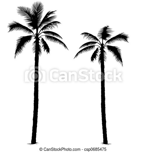 Palm tree silhouette 1 - csp0685475