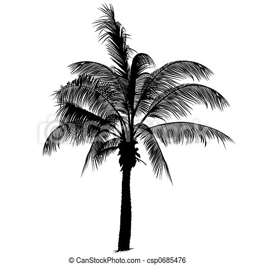Palm tree silhouette 2 - csp0685476