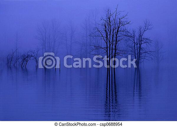 trees in fog - csp0688954