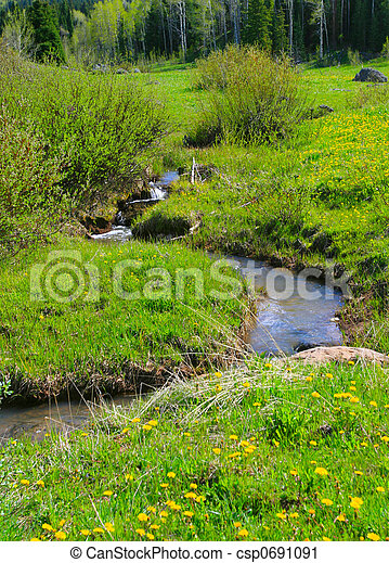 Mountain Meadow Stream - csp0691091