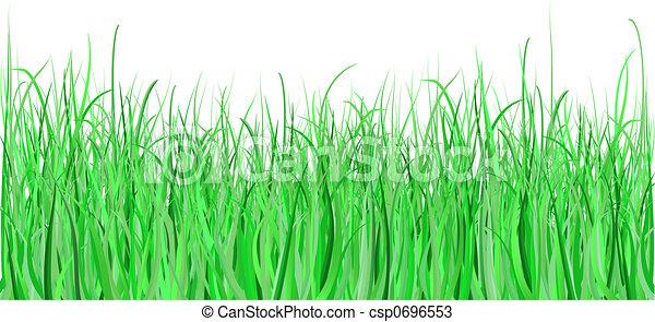 Detailed grass - csp0696553