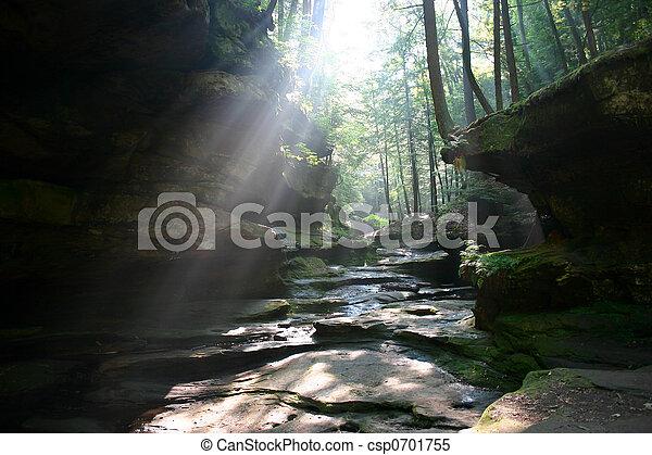 Sun shines through - csp0701755