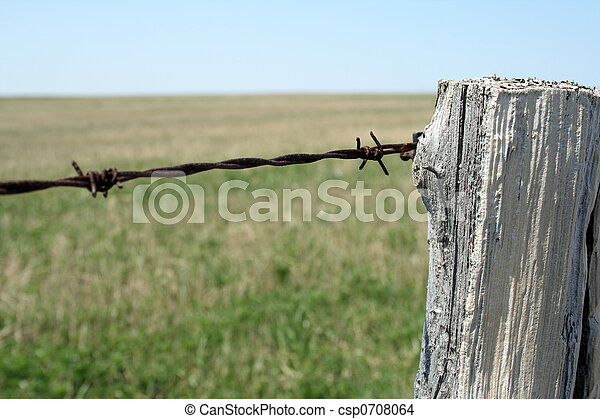 Wooden post, barbed wire - csp0708064