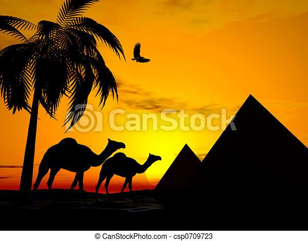 Desert sunset egypt - csp0709723