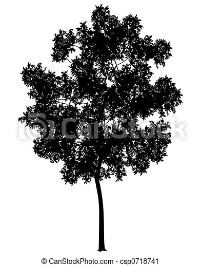 Generic tree - csp0718741