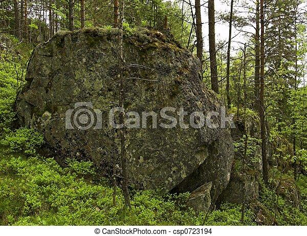Moss-covered Boulder - csp0723194
