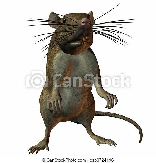Rat - csp0724196