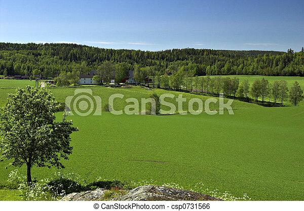 Norwegian Field Landscape - csp0731566