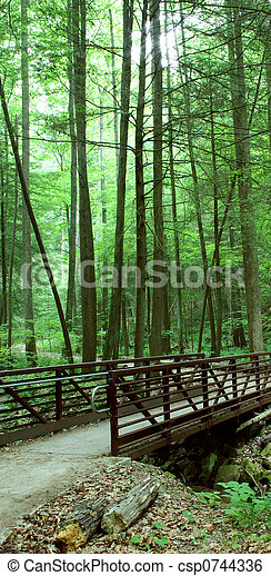 Secluded bridge - csp0744336