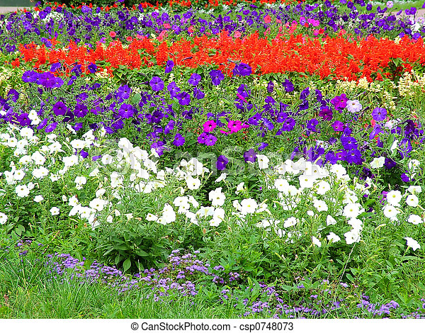 flowerbed - csp0748073