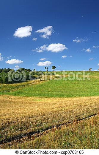 idyllic summer scenery - csp0763165