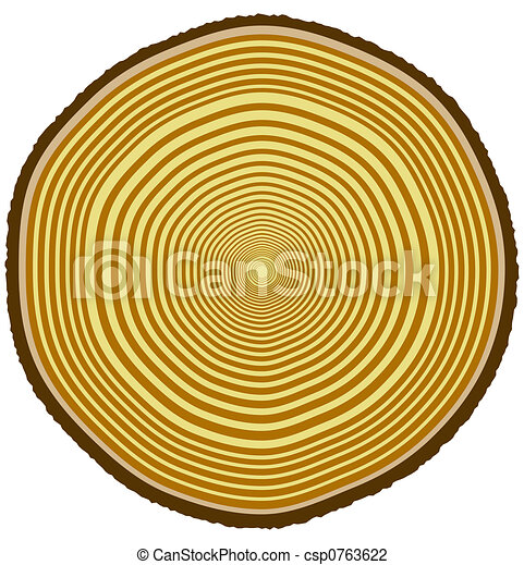 Tree Ring Drawings Tree Rings Illustration of