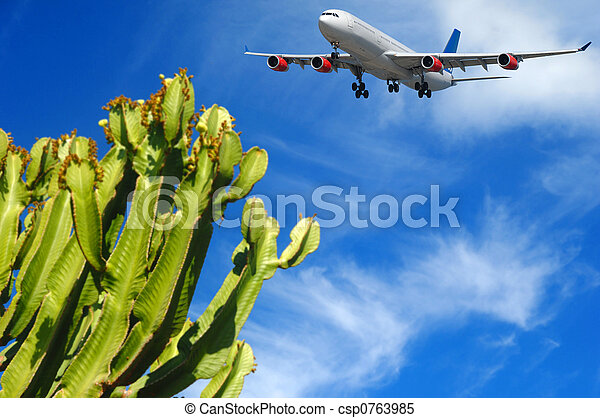 Plane and tropical destination - csp0763985