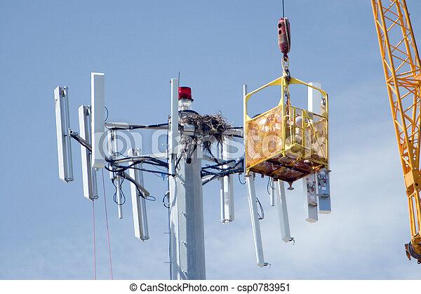 Network Upgrade - csp0783951
