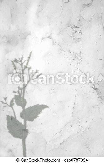 marbel paper - csp0787994