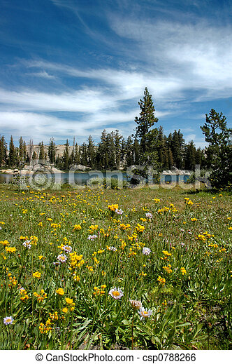 Meadow, Lake, and Sky - csp0788266