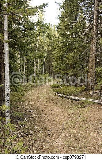 Mountain trail - csp0793271