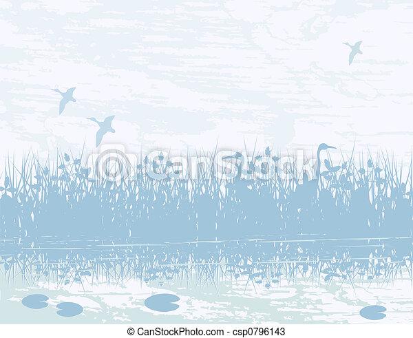 Wetland - csp0796143