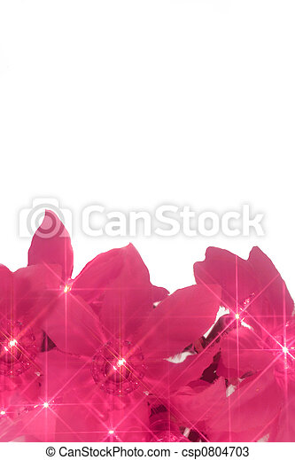 pink christmas lights - csp0804703