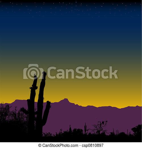 Cactus Desert Mountain Nightfall - csp0810897