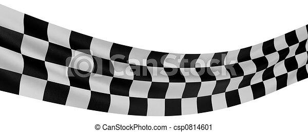 Checkered Flag - csp0814601